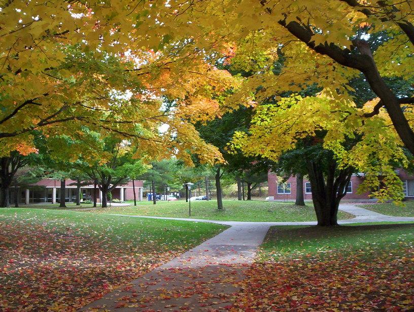 美国纽约州立大学布鲁克波特学院校园秋景
